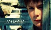 Con là Đavit đây
